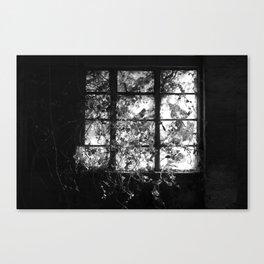 Window. Canvas Print