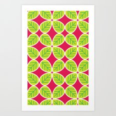 Primrose Collection 4 Art Print