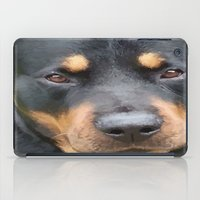 rottweiler iPad Cases featuring Beautiful Female Rottweiler Portrait Vector by taiche
