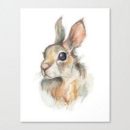 Rabbit Friend Canvas Print