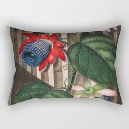 Robert John Thornton - The Winged Passion-Flower Rectangular Pillow