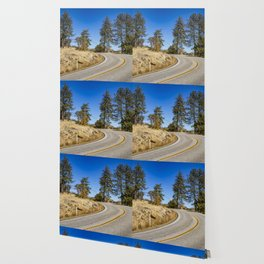 Empty Highway Road Cutting through Pine Trees and Golden Meadow in Lake Cuyamaca Wallpaper