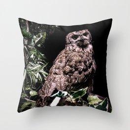 Handsome Hooter Throw Pillow