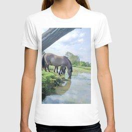 Drinking horses T-shirt