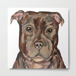 Sallie the dog Metal Print