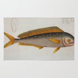 Vintage Dolphinfish Illustration (1785) Rug
