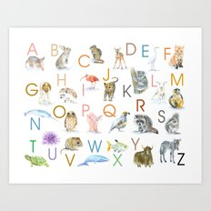 Animal Alphabet ABCs Poster Art Print