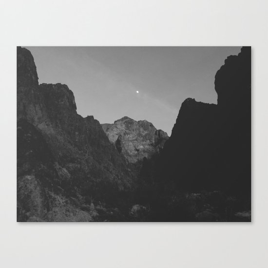 Palm Canyon Canvas Print