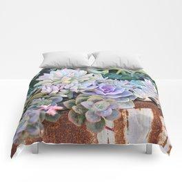Desert Flowers Comforters