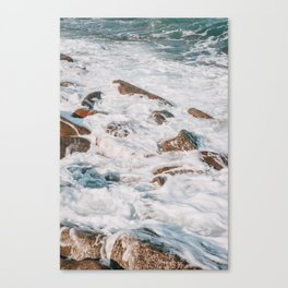 heady Canvas Print