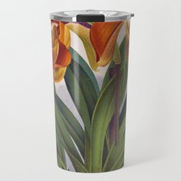 Pretty Orange Vintage Orchids Cypripedium Villosum Travel Mug