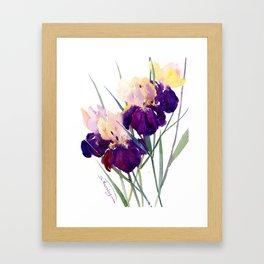 Deep Purple Flowers, Irises Framed Art Print