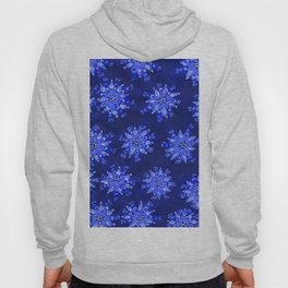 Blue Autumn Glory Hoody