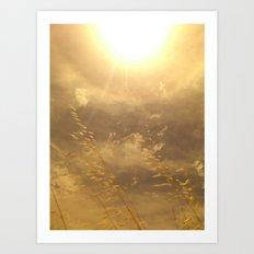 Summertime Pastel 3 Art Print