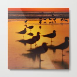 Daytona Sunrises Metal Print