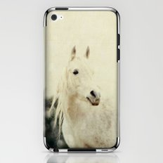 Lone Horse iPhone & iPod Skin