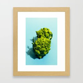 Romanesco Framed Art Print