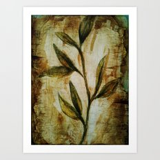 Old Vines Mixed Media Art Print