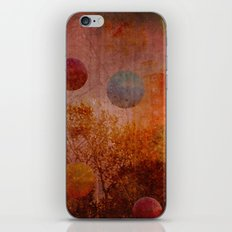 Bouncin' iPhone & iPod Skin