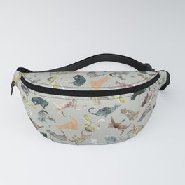 Marble Cats Fanny Pack