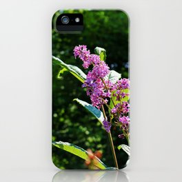 Lingering Propositions iPhone Case