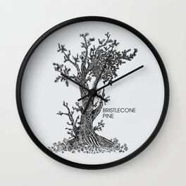 Bristlecone Pine Sketch Wall Clock
