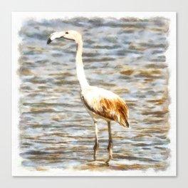 Pretty Flamingo Fledgling Watercolor Canvas Print