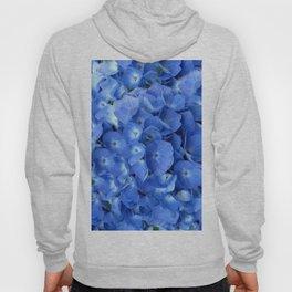 Gorgeous Baby Blue Hydrangeas  Floral Art Hoody