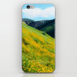yellow poppy flower field with green leaf and green mountain and cloudy blue sky in summer iPhone Skin