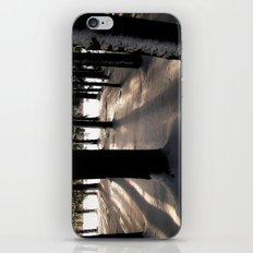 Winter's Promise iPhone & iPod Skin