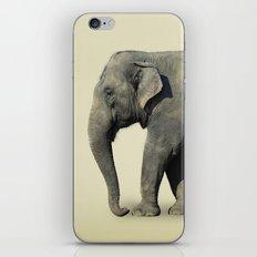 Ribbon Elephant iPhone Skin