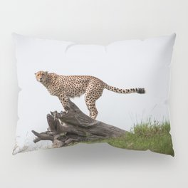 Strike a Pose! Pillow Sham