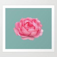 Rose on mint Art Print