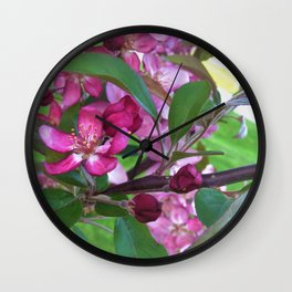 Profusion Crabapple 2 Wall Clock