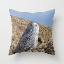 Snowy Owl with a strange look Throw Pillow
