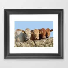 Do we look ok? Framed Art Print