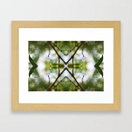 Nature Kaleidoscope # 4 Framed Art Print