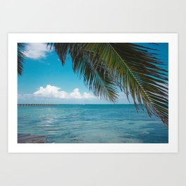 Palm Tree Life Art Print