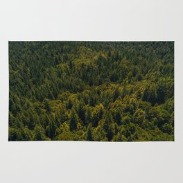 California Redwood Forest III Rug