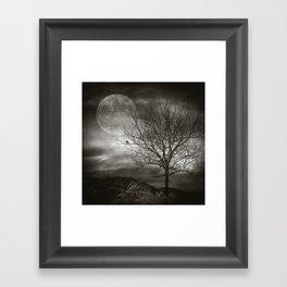 February Tree Framed Art Print