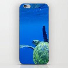 Turtle of the Sea iPhone Skin