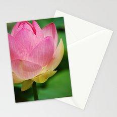 Lotus Blossom Flower 26 Stationery Cards