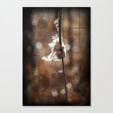 Pussy Willow Winds Canvas Print