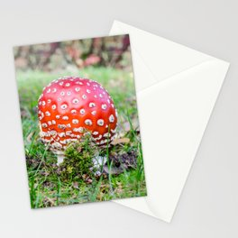 Fly agaric Stationery Cards