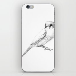 Kestrel quarter iPhone Skin