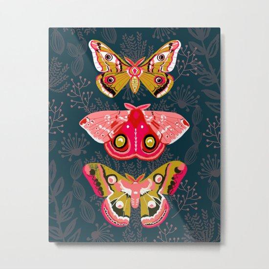Lepidoptery No. 4 by Andrea Lauren Metal Print