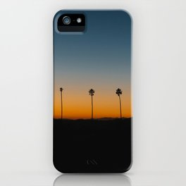 Palm Sunday iPhone Case