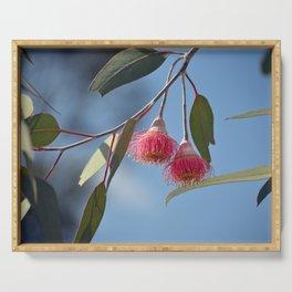 Eucalyptus Silver Princess Blossoms II Serving Tray