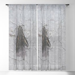 PS Sphinx Moth Sheer Curtain