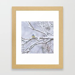 Blue Tit On A Snowy Branch Winter Scene #decor #society6 Framed Art Print